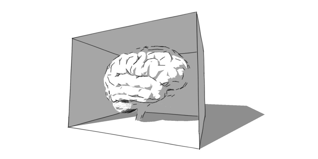 Brain in Box